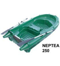 ARMOR NEPTEA 250